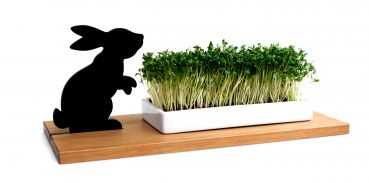 Kresseschale Hase - Osterhase -  smart'n'green